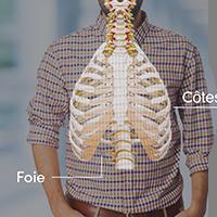 Squelette en hologramme - domaine santé